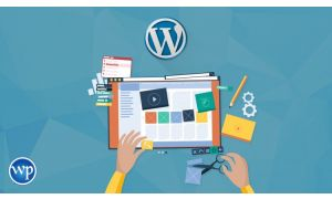 WordPress Theme Selection & Customization