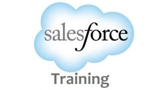 Sales Force Package